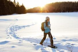 Hiver-Canadien-Nature-Raquette