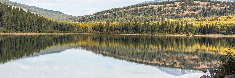 Voyage de Groupe au Québec : Quels sont les Avantages?