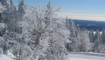 jour-parc-mont-tremblant-hiver-piste