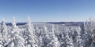 paysage-blanc-hiver-laurentides